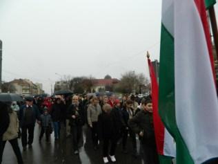ziua maghiarilor Carei (6)