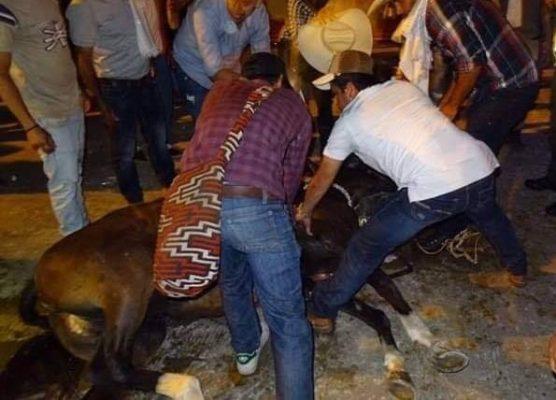 Foto: Caballo muere en cabalgata del 31 de enero de 2019 en la Feria de Roldanillo