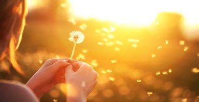 ser feliz Alcanzar la Felicidad