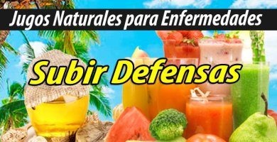 Jugoterapia JUGOS PARA subir defensas