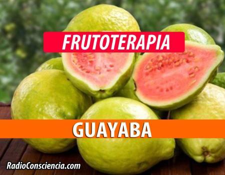 Guayabas