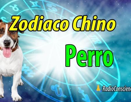 Horoscopo chino Perro