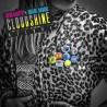 CloudshineDeluxe-RoaneNamuh+RevaDeVito-LiquidBeatRecords-RadioDAISIE