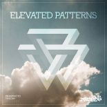 PragmaticTheory-ElevatedPatterns-RadioDAISIE