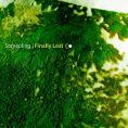 Somepling-FinallyLost-RadioDAISIE
