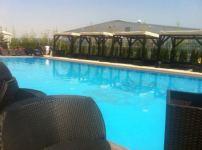 Blueberry Pool 2