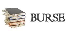 Valoarea minimă a burselor școlare , aprobată de Guvern