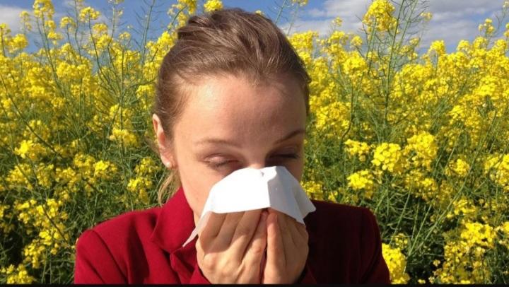 Teste gratuite pentru suspecții de alergii și tratamente de șoc pentru copiii cu alergii severe