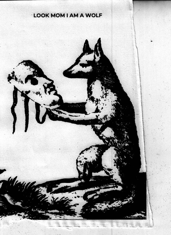 "Exposition Matthieu Haberard, ""Look mom I am a wolf"""