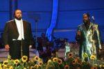 Pavarotti-White