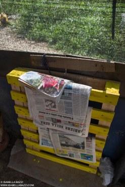 Quotidiani gratis. 2014