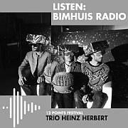 """""""Trio Heinz Herbert""""  12 points festival  28.09.2019 Live at Bimuis // Winner of 12 points Zenith Award for Emerging Artist !"""
