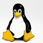 """30 Jahre Linux """"Was das Netz zusammenhält"""""""