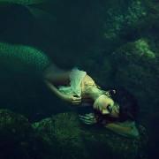 Glitzernde Wildnis – Wie ich dem Ruf der Meerjungfrauen folgte