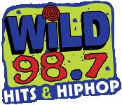 Wild 94.1 WSJT 98.7 WLLD Tampa Smooth Jazz Domino Dom Theodore