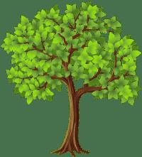 Radio Show Tree