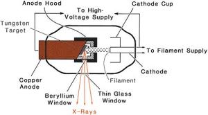 Production of Xrays | Radiology Key