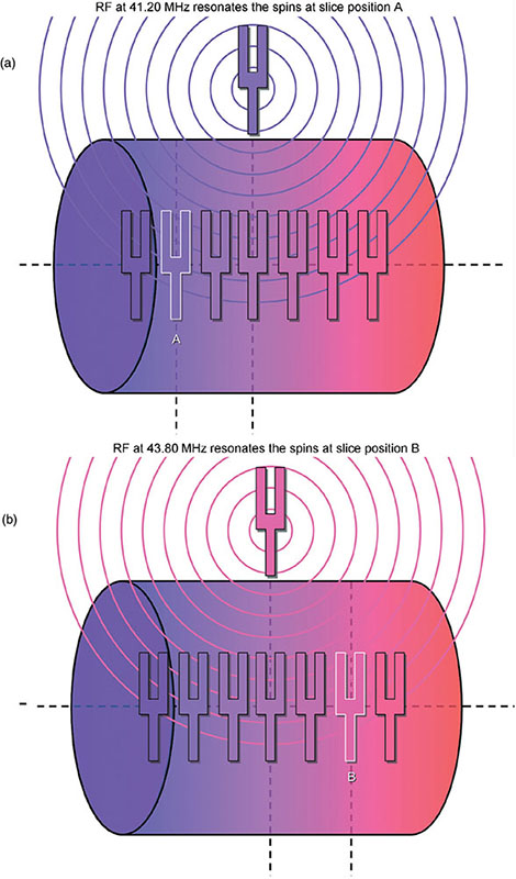 Diagrams show slice-selection and tuning fork where in (a) RF at 41.20 MHz resonates spins at slice position A and in (b) RF at 43.80 resonates spin at slice position B.