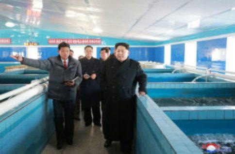 Corea del Norte lanza un misil intercontinental en un nuevo desafío a Trump - 5b691306a636417215d42e2842c4aa69947d0ebf-300x197