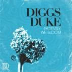 Diggs Duke