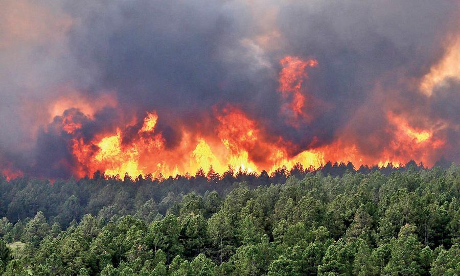 القيروان: حريق هائل بجبل السرج
