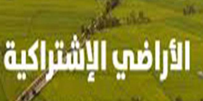 قبلي: احتجاج عدد من اهالي منطقة الجديدة و معتمد قبلي الشمالية يدعو الى اتباع المسار القانوني