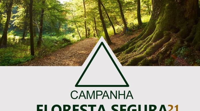 Campanha Floresta Segura 2021