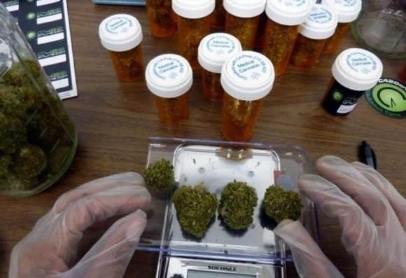 Problemáticas de desarrollo del cannabis medicinal en Uruguay