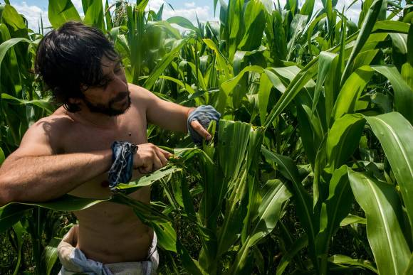 ¿Encaminados? El progreso de la agroecología en Uruguay