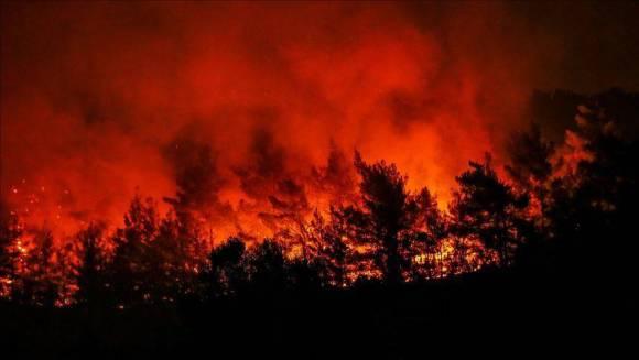 Danilo Antón, un incendio que dura 500 años