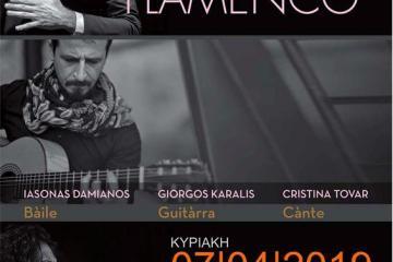 flamenco_radiopoint