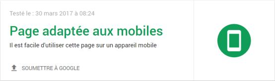 Cet outil indique qu'il s'agit d'un site mobile