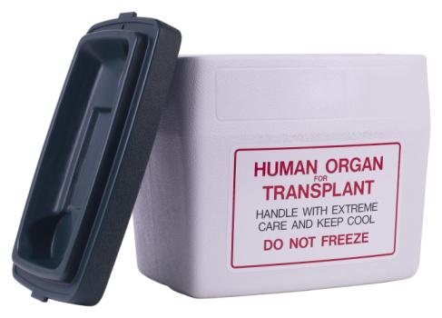 contenitore-organi-da-trapiantare