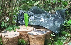 El ejércitoecuatoriano encontró un cargamento de explosivos escondidos en una carretera empedrada que conduce a pasos ilegales de la frontera con Colombia