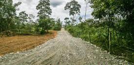 Negaron Licencia Ambiental para mejoramiento vial