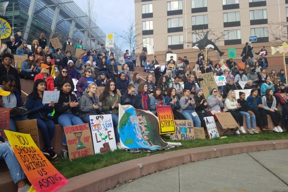 December 6, 2019 Climate Strike in Tacoma, WA