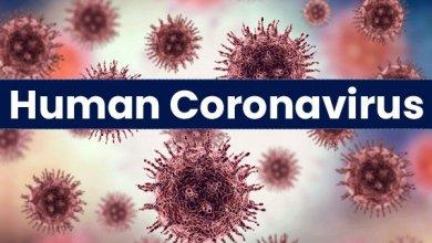 """صورة وزارة الصحة توجه تعليمات لمواجهة أي طارئ خاص بــ """" فيروس كورونا """""""