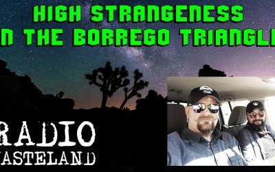 High Strangeness in the Borrego Triangle