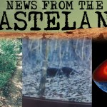 radio_wasteland_2021-03-08 News