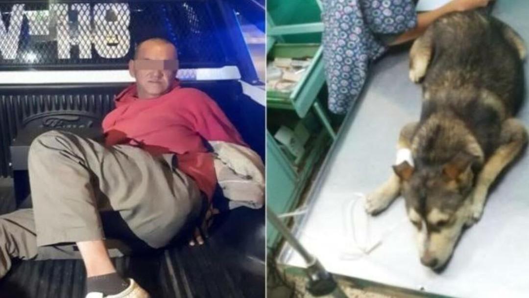 """DETIENEN A PRESUNTO VIOLADOR DE PERRITA """"MATI"""""""