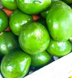 Avocados 2-45