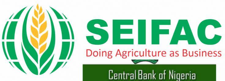SEIFAC Accounts Upgrade