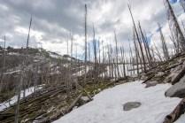 Ridge between Glen Lake and the no name lakes