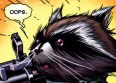 RACCOONS IN THE NEWS: One Specie's Misfortune is Another's Happy Day