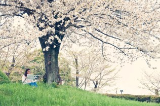 raduban photography spring edition