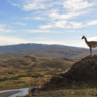 PAT: El Calafate. The way to Argentina