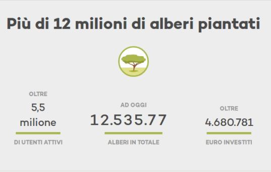 Ecosia: il motore di ricerca per piantare alberi