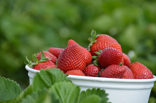 Make Your Fresh Fruit at Radwyn Apartments Last Longer With These Tips