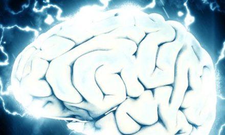 La activación del cerebro permite conseguir una mayor longevidad