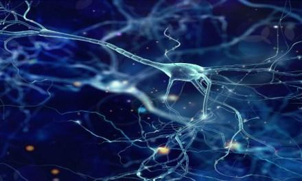 A la vanguardia de la lucha contra el Alzheimer